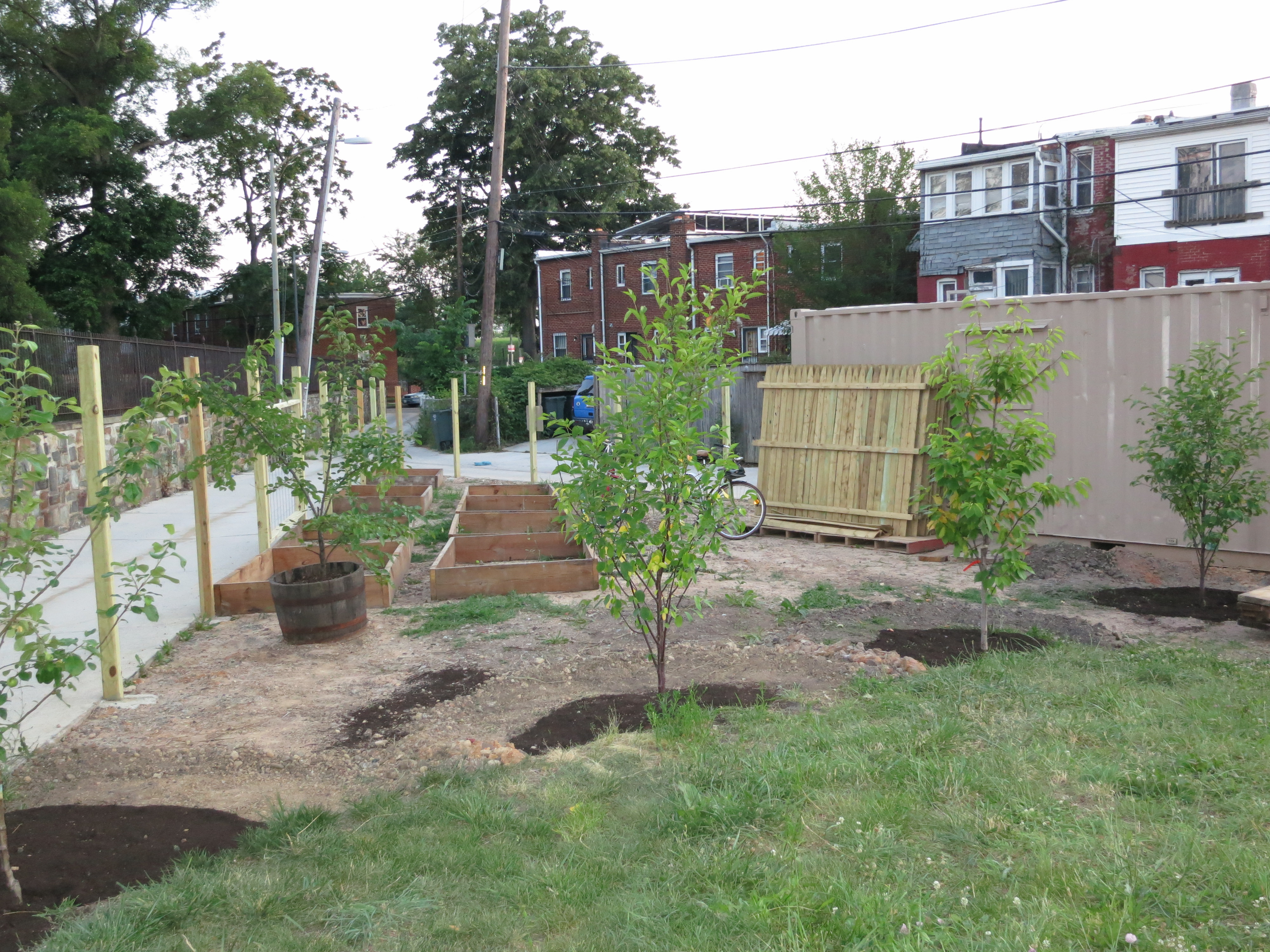 Brian builds 10 garden beds, installs first bunch of fruit trees